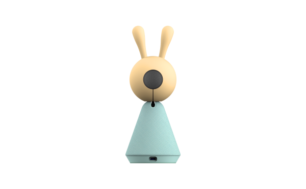 Y501C_rabbit_back